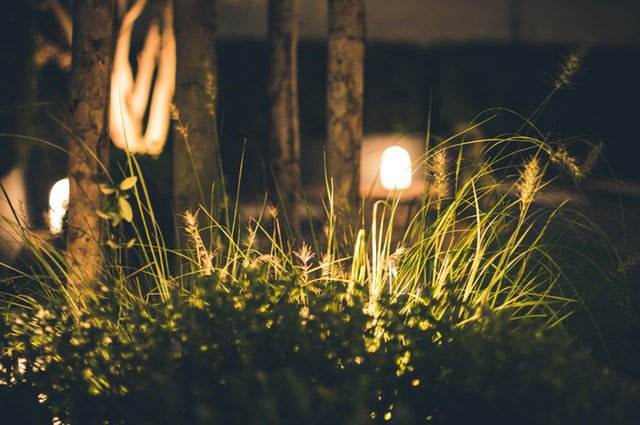 How To Use Garden Lights So You Can Make Your Garden and Outdoor Entertaining Area Even More Beautiful Of An Evening