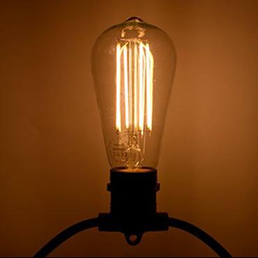 Commercial Grade 240V Festoon Light